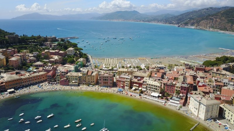 Aside from the fabulous beachfront, Sestri is surrounded by olive trees
